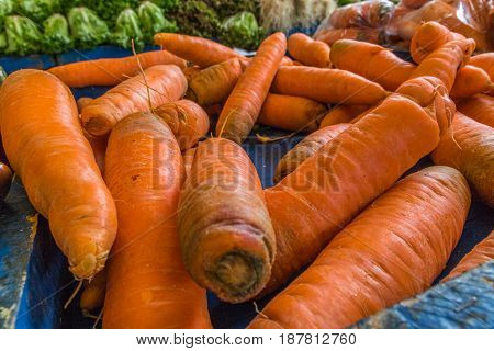 Closeup of a group of orange carrots on a blue background at a market with leafy greens in the background