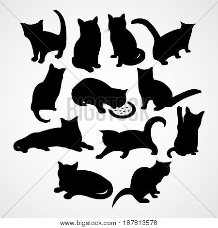 beautiful silhouettes for cats and kittens with different poses and moves