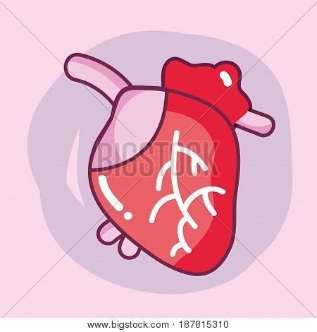 heart organ with blood circulation for the veins, vector illustration