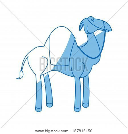 camel manger animal character christmas vector illustration