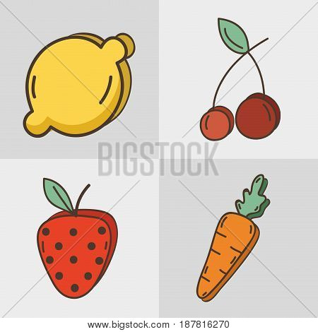 set fresh organ fruit and vegetables, vector illustration