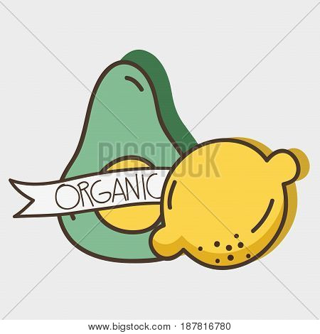 fresh avocado and lemon organ fruit with ribbon, vector illustration