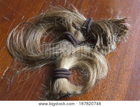 Close up of a thick cut-off ponytail of long blond hair held together with brown hair ties symbolic of a life change