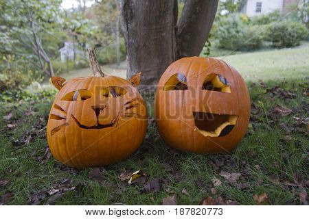Two colorful Halloween Jack-o-lanterns with happy looking faces sit side by side in the autumn leaf strewn grass. One is carved to look like a cat with whiskers and ears and the other resembles an emoticon