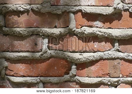 Close up of an old red brick and thickly mortared wall with a small fly hiding on it