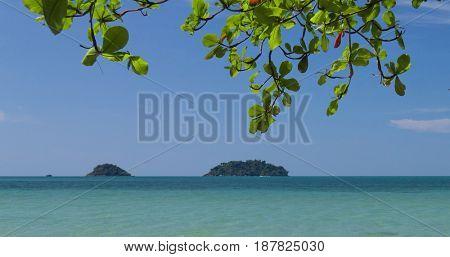 Idyllic Coast Jungle and Sea