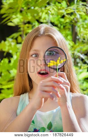 studying a flower with magnify glass