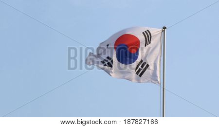 South Korean flapping during the day