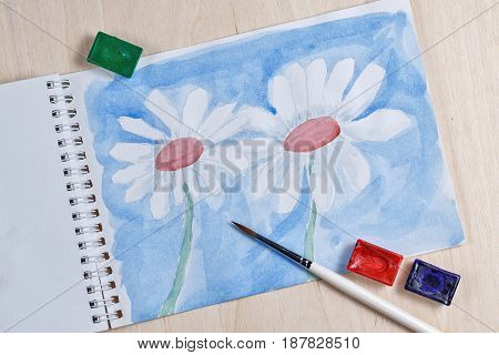 Camomiles with watercolor paint on a blue background. Spring flowers. Botanical painting. Drawing in the sketchbook is a brush and paint in the cuvettes.