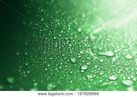 Close up the rain water drops on green sponge surface as abstract background