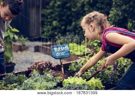 Little Girl Learning Environment at Vegetable Farm