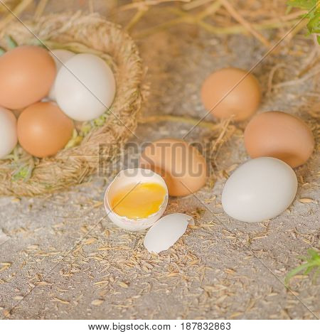 Egg In Hay Nest On Old Wooden Background
