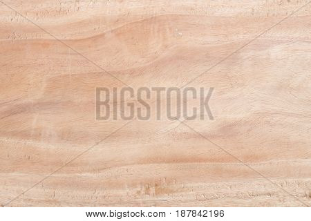 background texture surface splat wooden of tree
