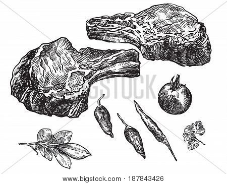 hand drawn sketches of raw beef on bones and spices