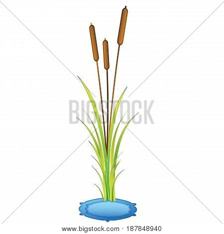 Water plants with blue frame in vector format.