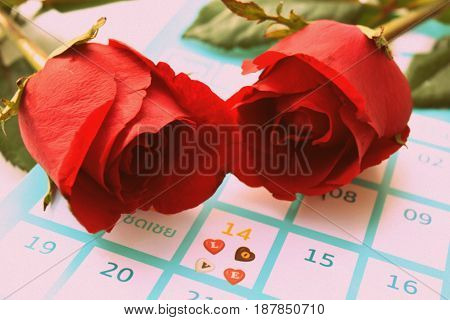 Beautiful flowers, red roses Valentines Day .