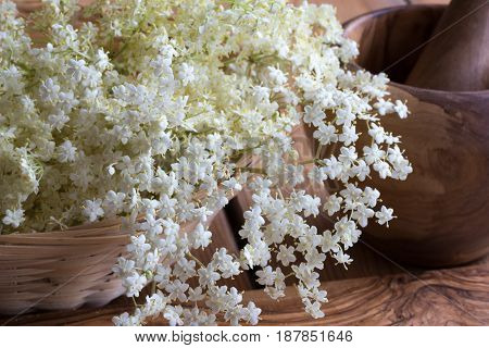White Elder Flowers On A Wooden Background