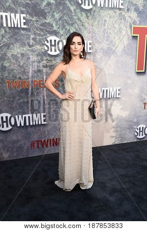 LOS ANGELES - MAY 19:  Ana De La Reguera arrives for the premiere of
