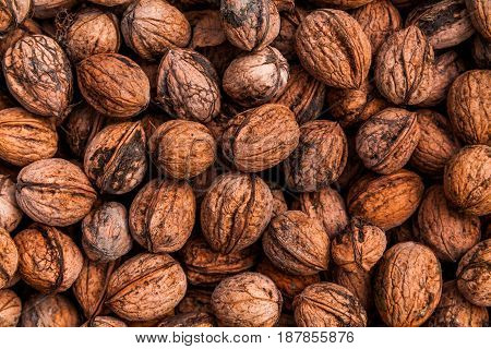 Background of walnuts. Many mature nuts in box