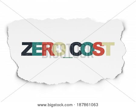 Business concept: Painted multicolor text Zero cost on Torn Paper background