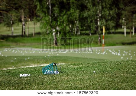 Horizontal outdoors shot of course for golf covered with the balls.