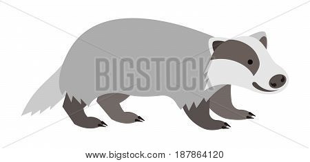Cute smiling badger vector cartoon illustration. Wild zoo animal icon. Furry adult mammal standing. Isolated on white. Forest fauna childish character. Simple flat design element