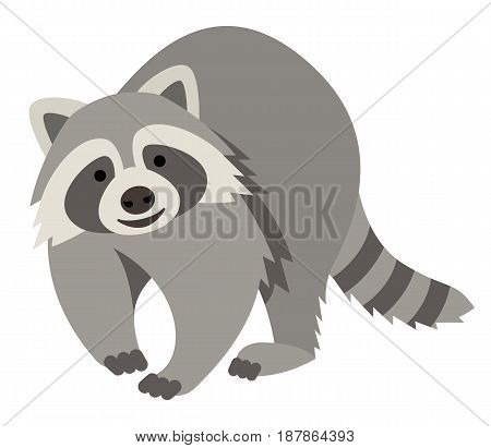 Cute smiling raccoon vector cartoon illustration. Wild zoo animal icon. Fluffy adorable pet looking straight. Isolated on white. Forest fauna childish character. Simple flat design element for kids