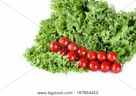 Green Lettuce Salad Leaves With Cherry Tomatoes Isolated On White, Fresh Vegetables On White