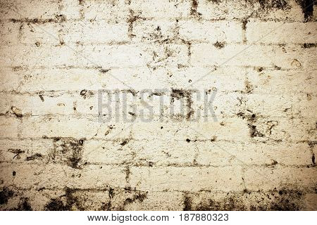 Grunge brick wall texture can be used a background