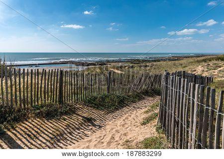 Path in the dunes towards the beach of la Paracou Les Sables d'Olonne