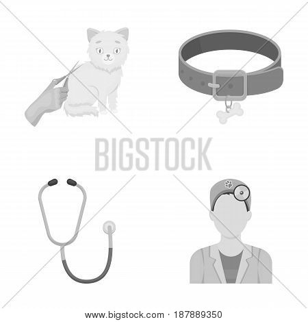 Collar, bone, cat, haircut .Vet Clinic set collection icons in monochrome style vector symbol stock illustration .