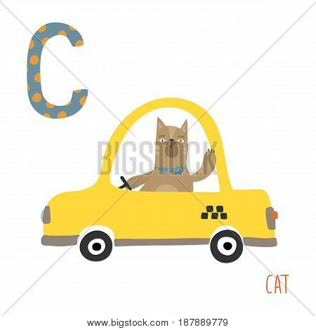 Vector illustration of cute kids animal alphabet. Letter C for the Cat in Car. Cartoon little cat on car isolated on white background for child illustration, baby shower, birthday card, invitiation, T-shirt. Preschool and school reading study. Taxi logo
