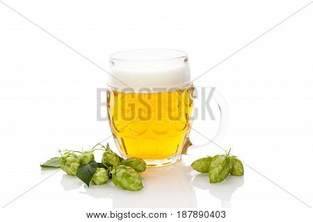 Glass of beer with hop fruit isolated on white background.