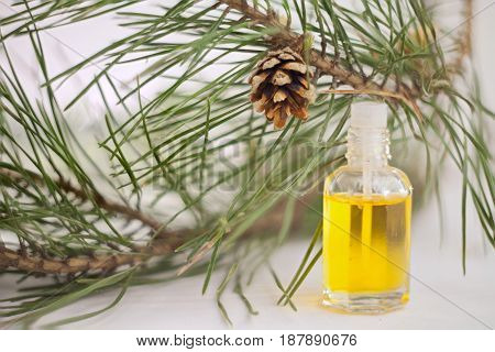 Essence Of Pine On Table In Beautiful Glass Jar