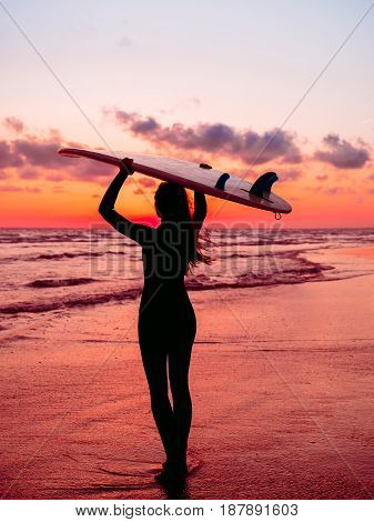 Sporty girl go to surfing. Woman in wetsuit and red sunset or sunrise on ocean