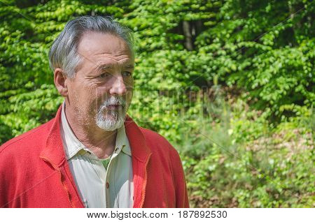 Portrait of a handsome senior man in bright sweater in the forest thinking and looking far away. Serious senior man with gray hair and beard. Horizontal image.