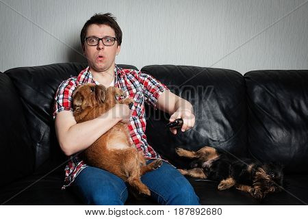 Closeup Portrait, Young Man In The Red Shirt, Sitting On Black Leather Couch With Two Dogs, Watching