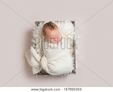 baby napping in basket , wrapped up, topview