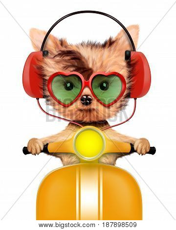 Funny puppy sitting on a motorbike and wearing headphones, isolated on white. Delivery concept. Realistic 3D illustration of yorkshire terrier
