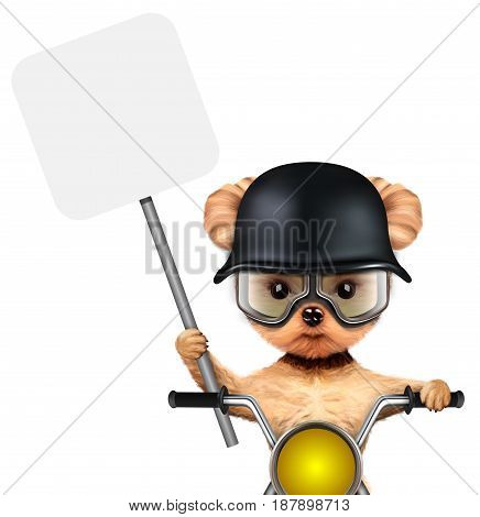 Funny biker dog sitting on a chopper and holding banner. Fast city transport concept. Realistic 3D illustration of yorkshire terrier