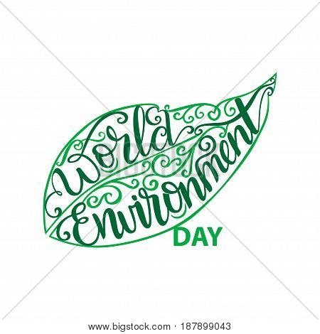 Vector illustration, eco poster, eco banner or eco card for world environment day with stylish typography, and green leaves.