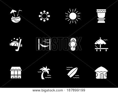 Elements of holiday on exotic beach. Hawaiian vacations and resort. Symbolic white glyph style vector icons set on black.