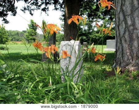 Country Cemetery 2