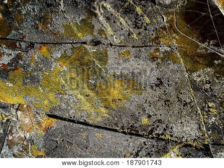 Stone, abstract stone background, old stone, grunge, lichen stone, rock