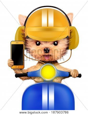 Funny puppy sitting on a motorbike and wearing helmet, isolated on white. Delivery concept. Realistic 3D illustration of yorkshire terrier