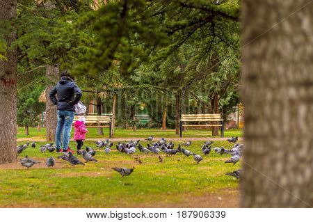 Mother and daughter watching pigeons in a public park with pine trees and benches on a cold sunny day