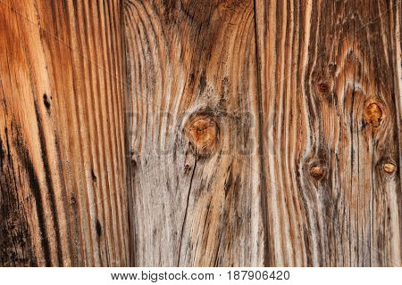 Old wood worn for use as wallpaper