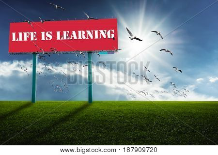 Red billboards on green field and sky background. Seagulls flying.