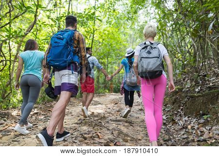 People Group With Backpacks Trekking On Forest Path Back Rear View, Young Men And Woman On Hike Tourists Hiking
