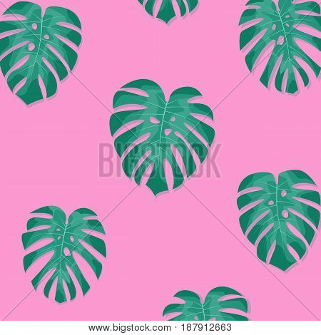 Tropical palm leaves. Monstera leaves on millenial pink background. Exotic pattern.